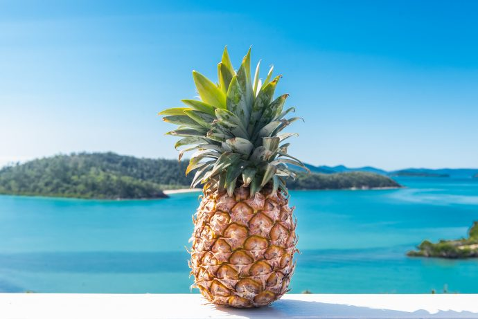 Whitsundays Holiday Home: Pineapple House Whitsundays